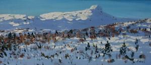 Kald vinter Bitihorn, 19x50