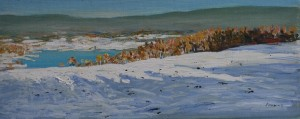 Decembersun in Maridalen 2 (20x50)
